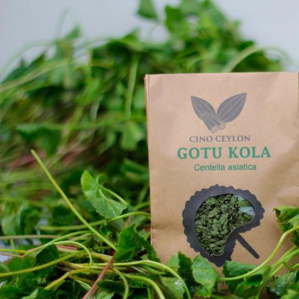 Gotu Kola (Centella asiatica) - Cut