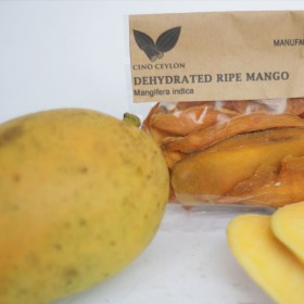Ripe Mango (Mangifera indica)